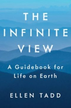 Cover image of The Infinite View