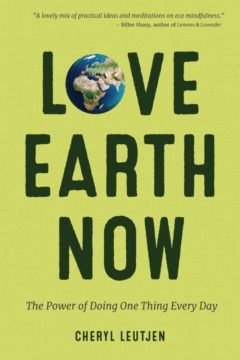 Love Earth Now Cover