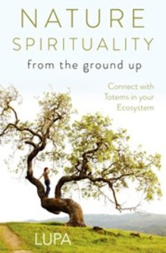 Cover image of Nature Spirituality From the Ground Up