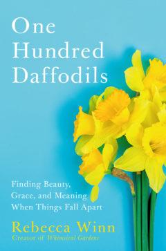 One Hundred Daffodils by Rebecca Winn