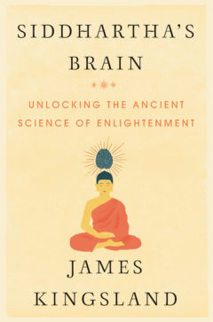 Cover image of Siddhartha's Brain
