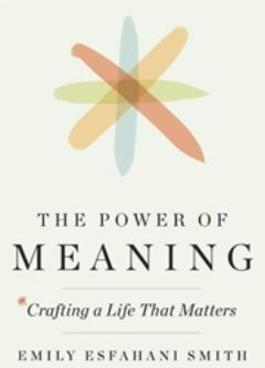 Cover of The Power of Meaning