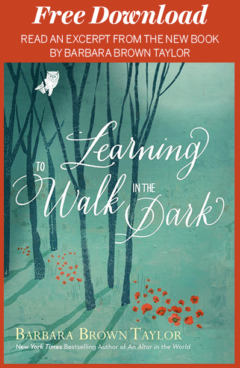 Free Download: Learning to Walk in the Dark
