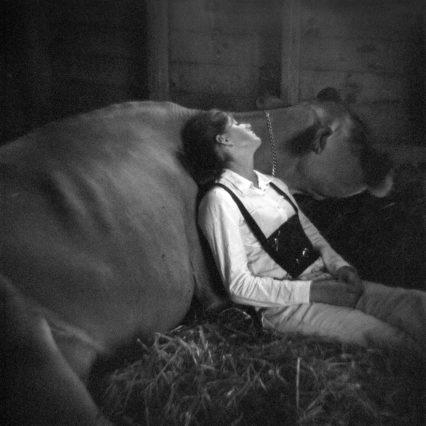 Io Cow Girl Credit Meg Birnbaum Xts