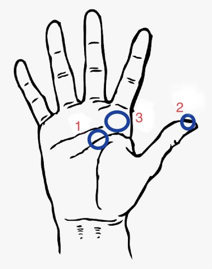 Reflexology points for the full moon right hand