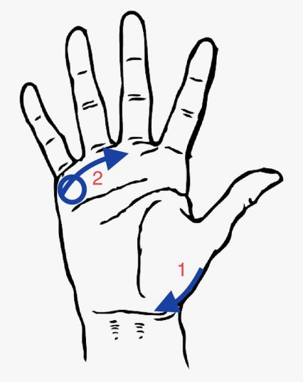 Reflexology points for the waning moon right hand palm
