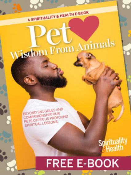 Sh E Book Pet Love