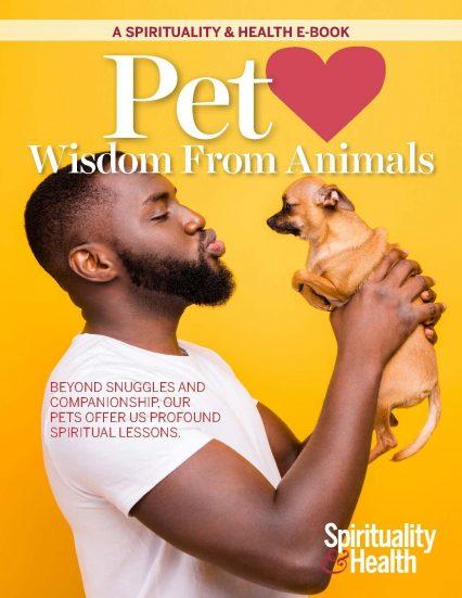Pets Wisdom