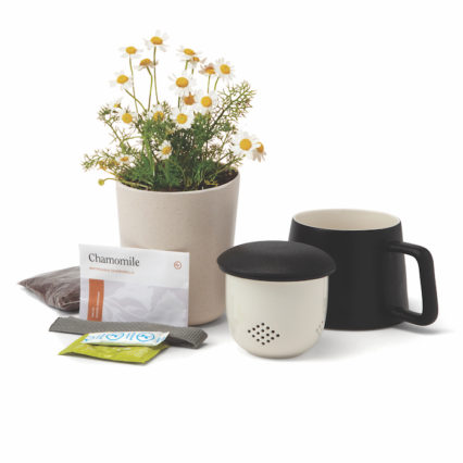 Self Care Chamomile Set