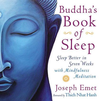 Tool Buddhas Book Of Sleep Cover Art Lg