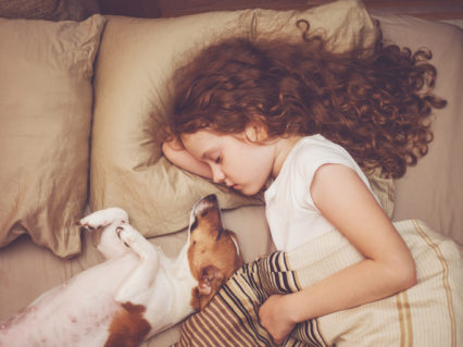 Girl And Jack Russell Sleeping In Bed With Dog