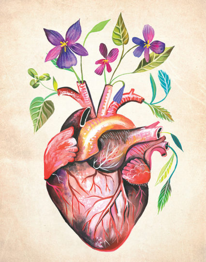 Heart Credit Katie Daisy