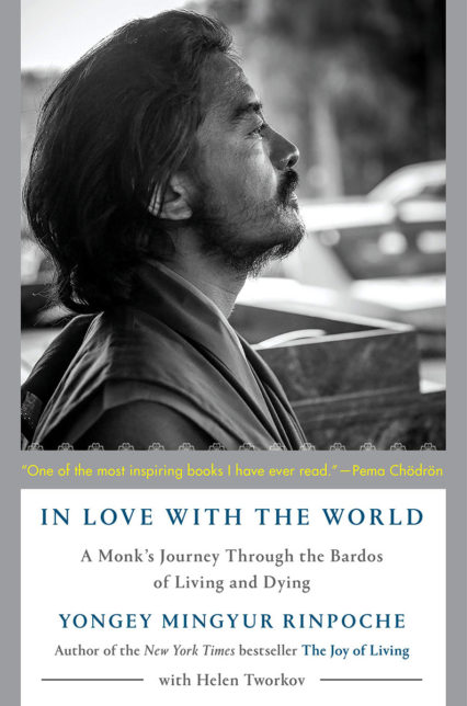 Inlovewiththeworld Bookcover