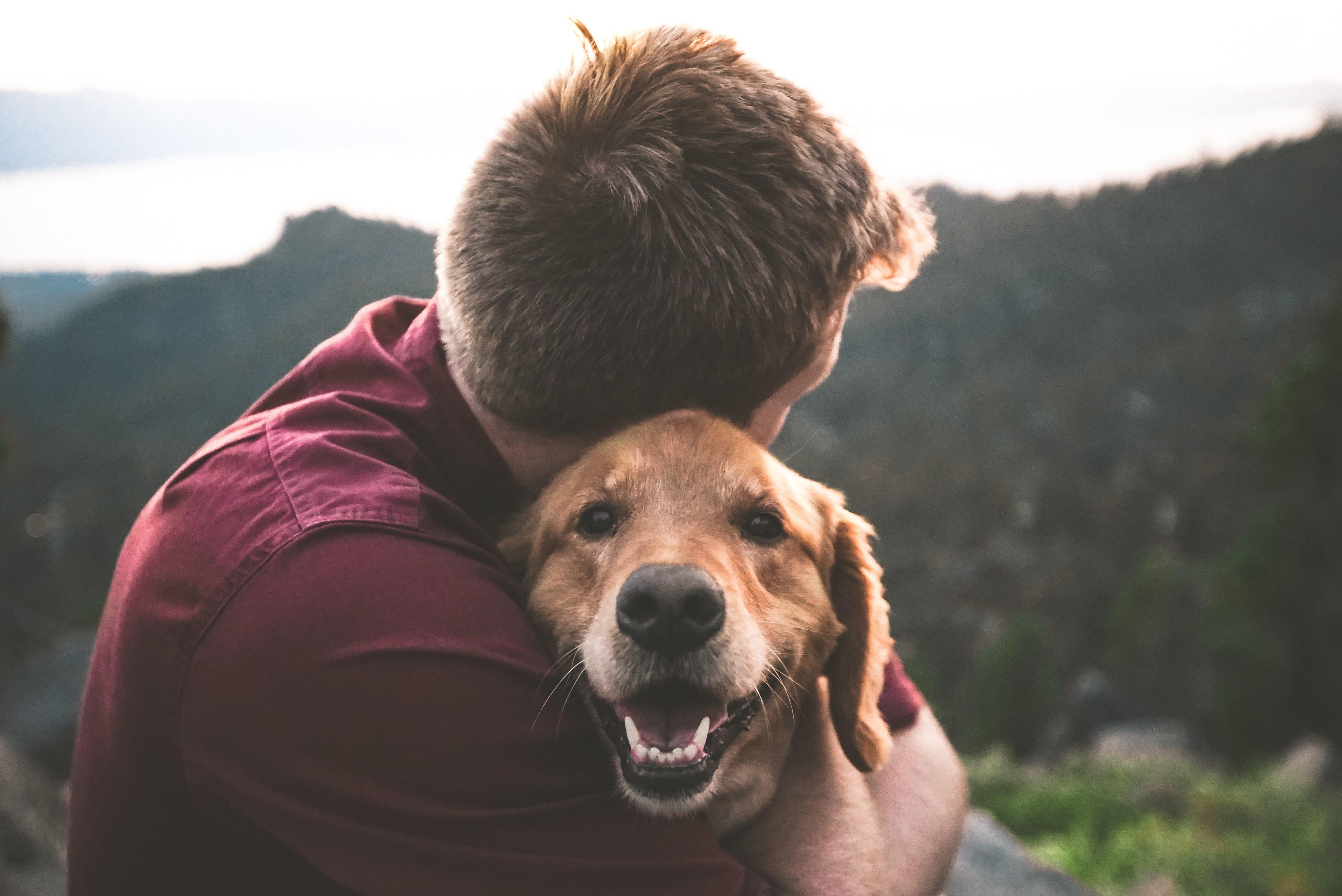 empath and dog