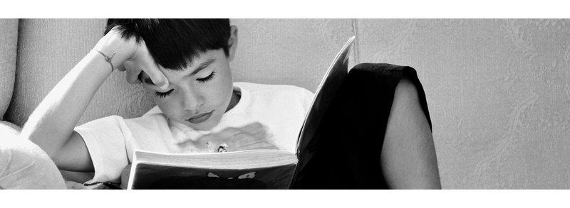 VARK Learning styles - read/write learners