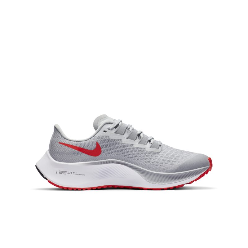 Nike Air Zoom Pegasus 37 CJ2099-006 03