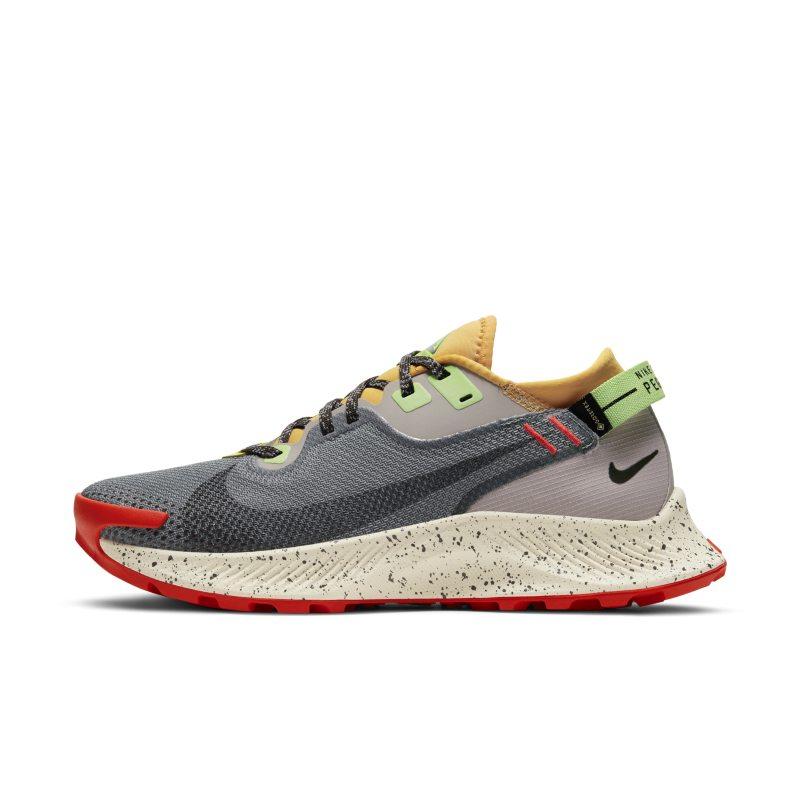 Nike Pegasus Trail 2 GORE-TEX CU2018-002