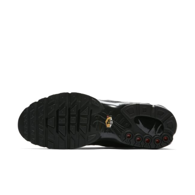 Nike Air Max Plus AJ2029-001 03