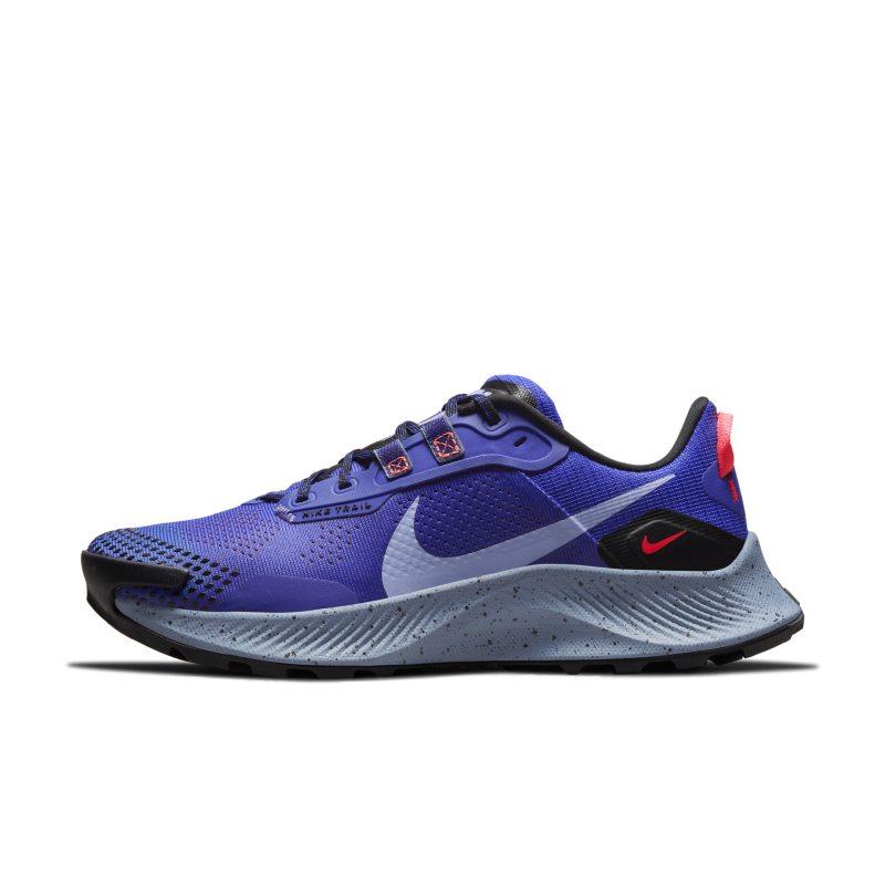 Nike Pegasus Trail 3  DA8698-401 01