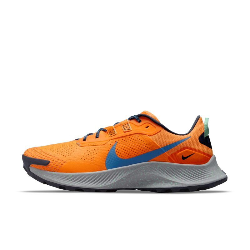 Nike Pegasus Trail 3 DA8697-800 01