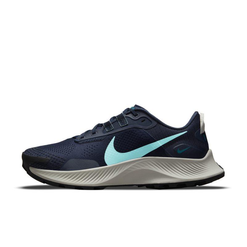 Nike Pegasus Trail 3 DA8698-400 01