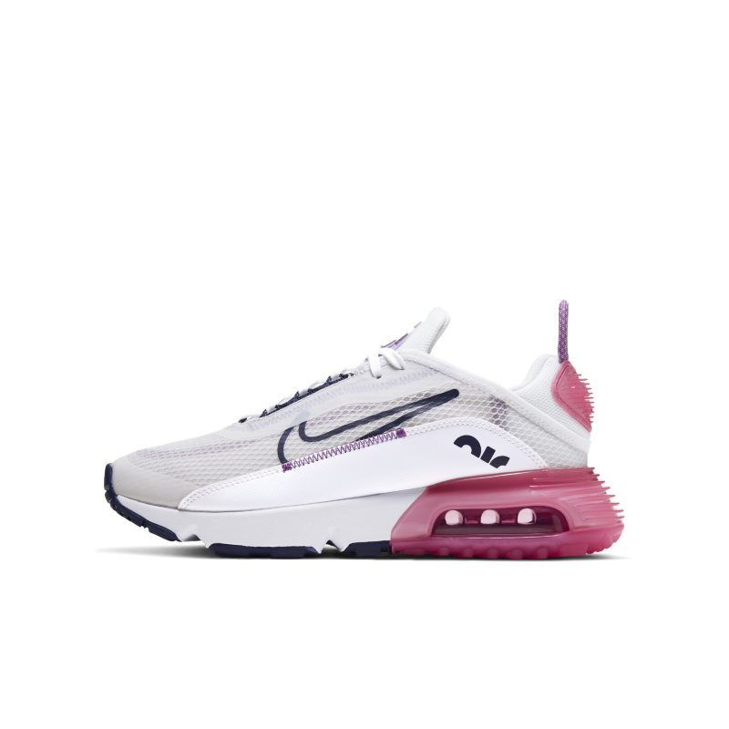 Nike Air Max 2090 CJ4066-003