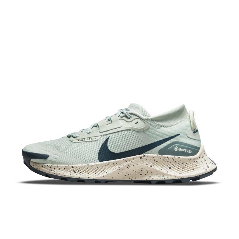 Nike Pegasus Trail 3 GORE-TEX DC8794-003 01