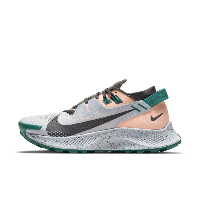 Nike Pegasus Trail 2 CK4309-004 01
