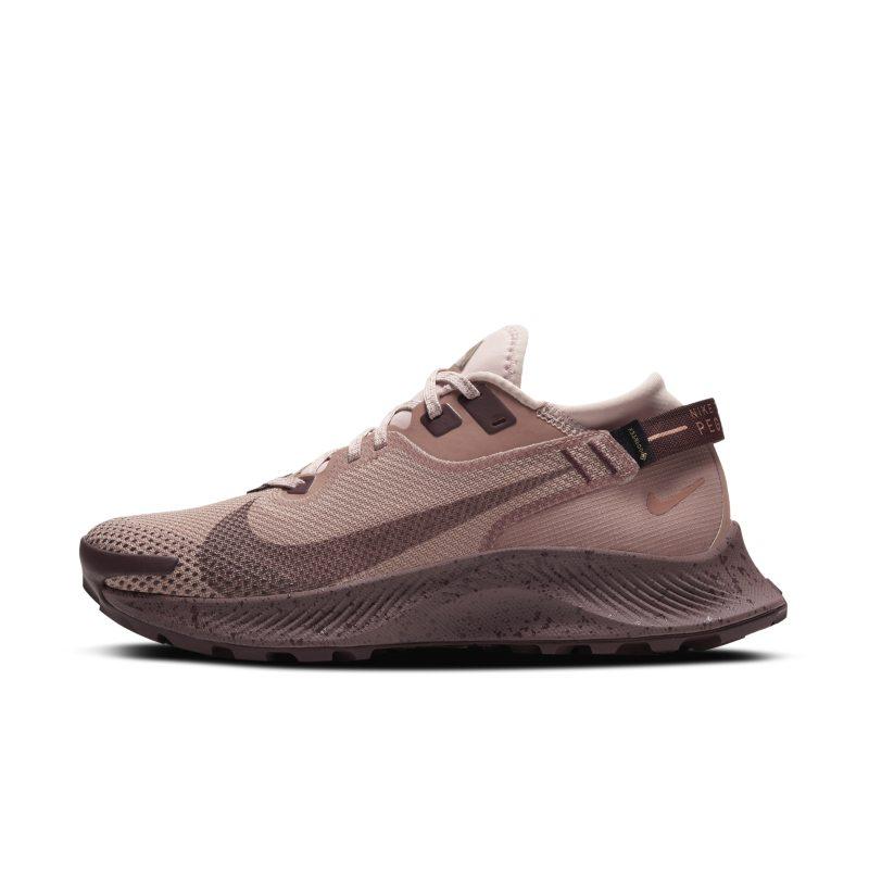 Nike Pegasus Trail 2 GORE-TEX CU2018-200 01