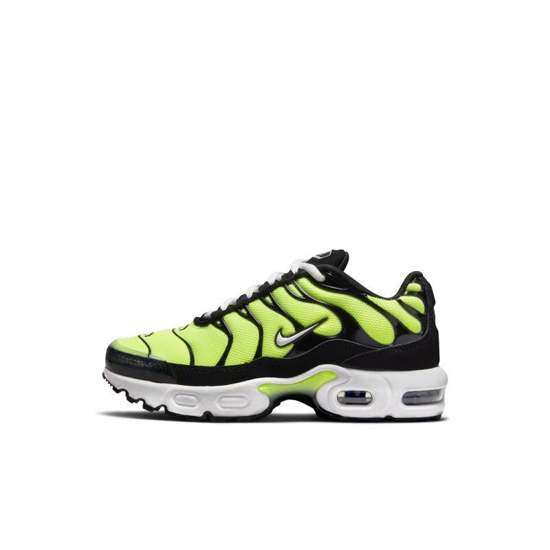 Nike Air Max Plus CD0610-301 01