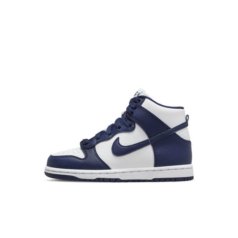 Nike Dunk High DD2314-104