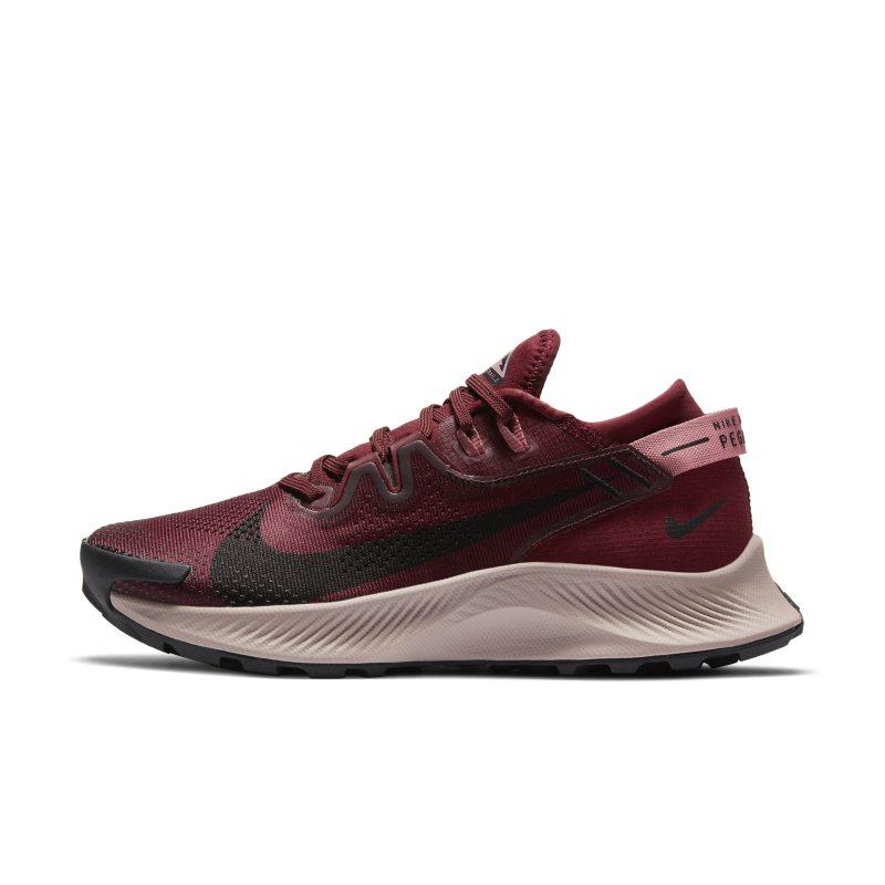 Nike Pegasus Trail 2 CK4309-600 01