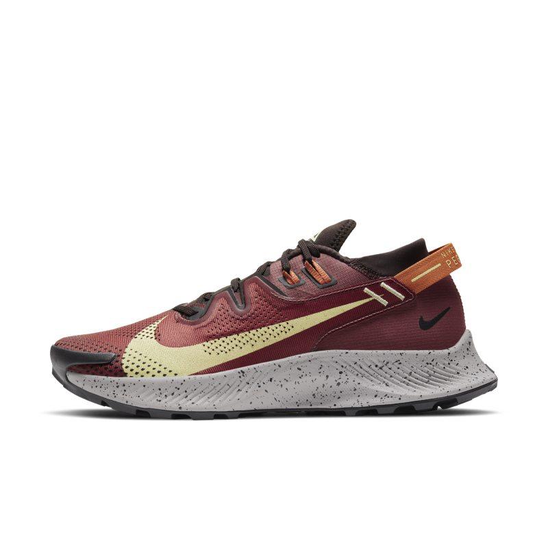 Nike Pegasus Trail 2 CK4305-600 01