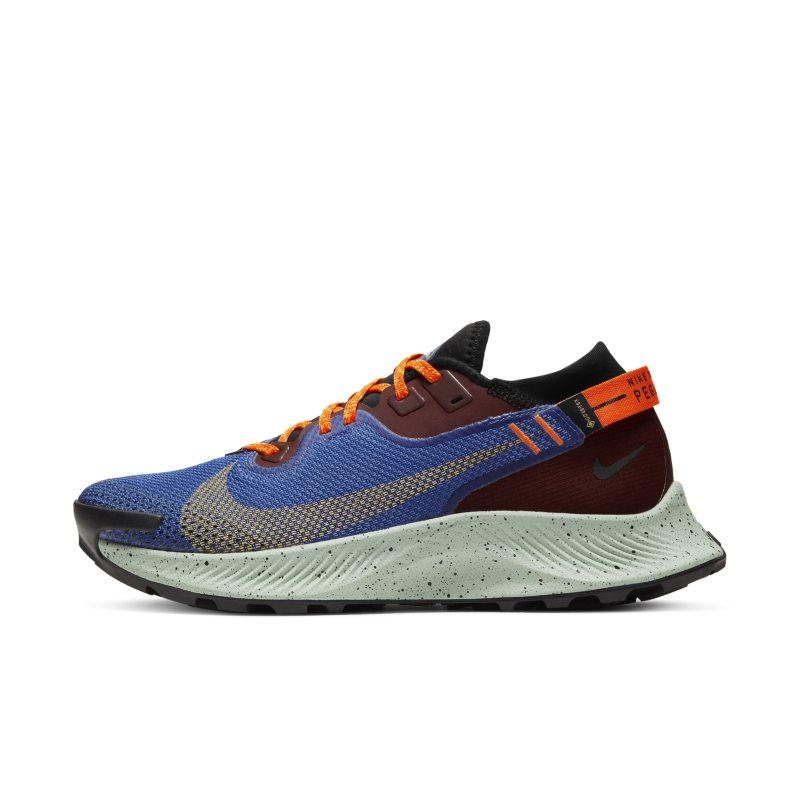 Nike Pegasus Trail 2 GORE-TEX CU2018-600 01