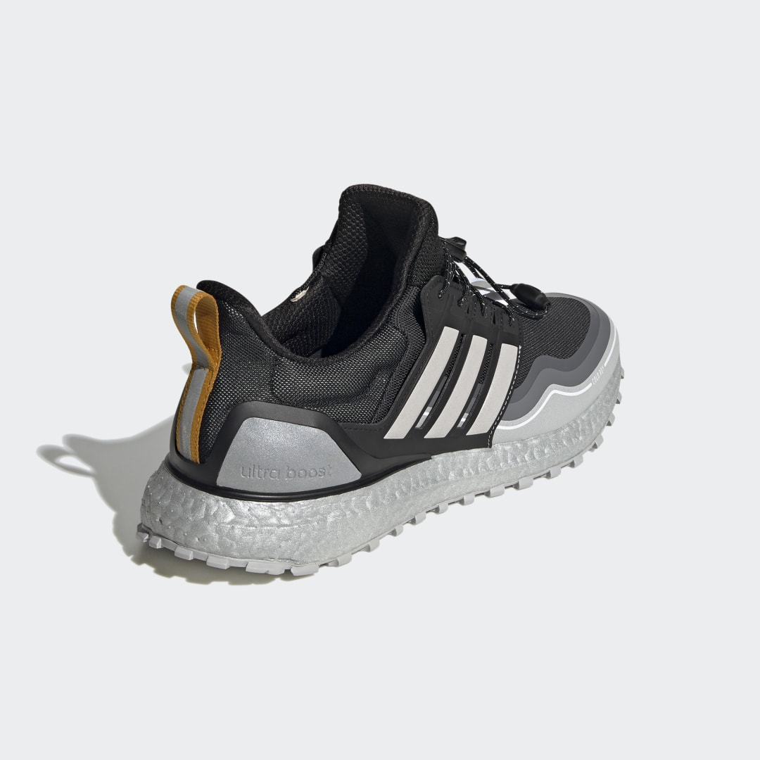 adidas Ultra Boost WINTER.RDY DNA FW8696 02