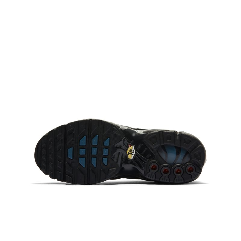 Nike Air Max Plus DB2608-001 04