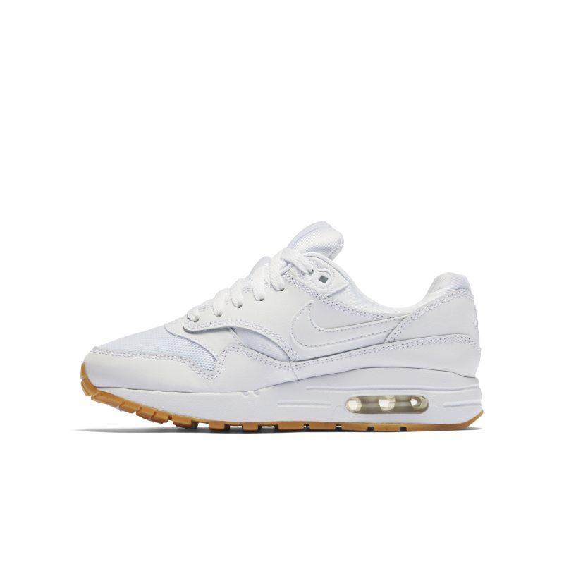 Nike Air Max 1 807602-113