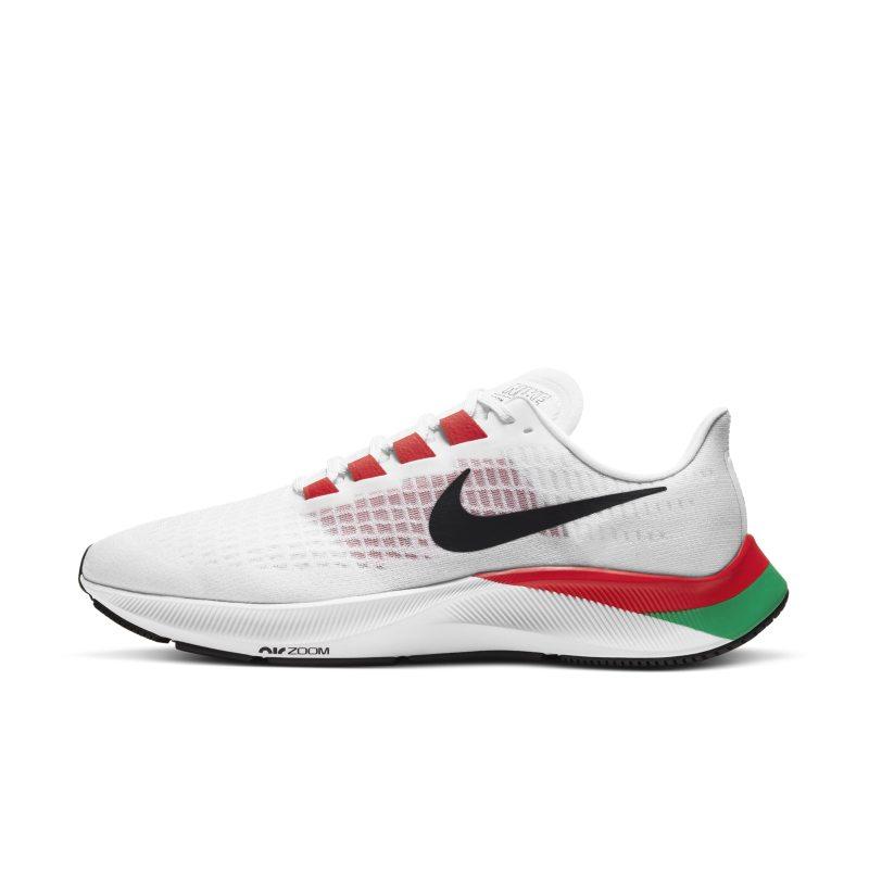 Nike Air Zoom Pegasus 37 Eliud Kipchoge DD9478-100