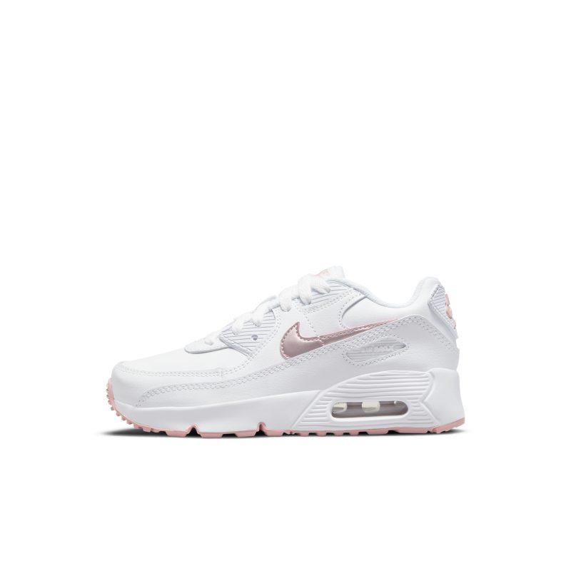Nike Air Max 90 CD6867-115 01