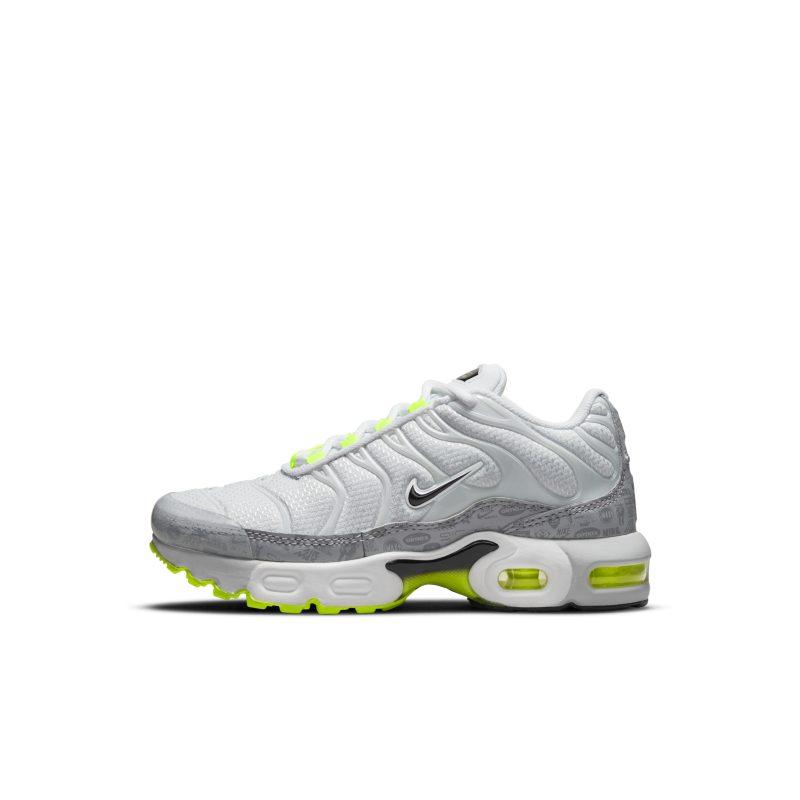 Nike Air Max Plus CD0610-015 01