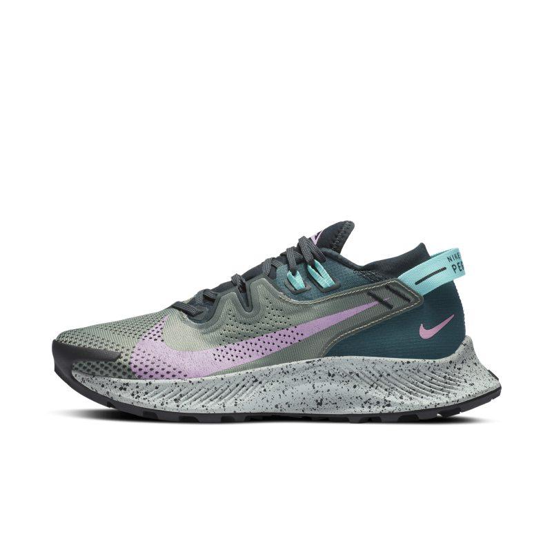 Nike Pegasus Trail 2 CK4309-300 01