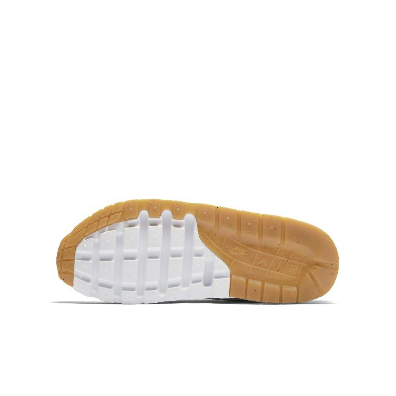 Nike Air Max 1 807602-113 04