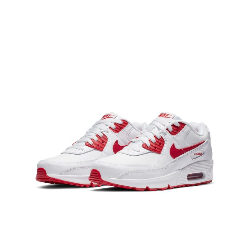 Nike Air Max 90 LTR CD6864-106 02