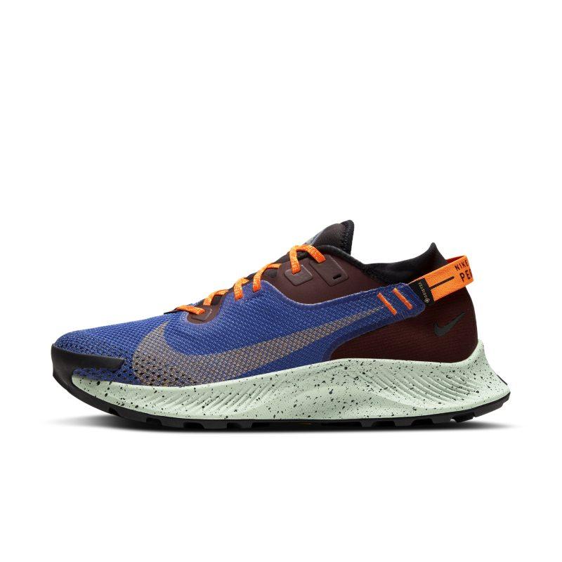 Nike Pegasus Trail 2 GORE-TEX CU2016-600