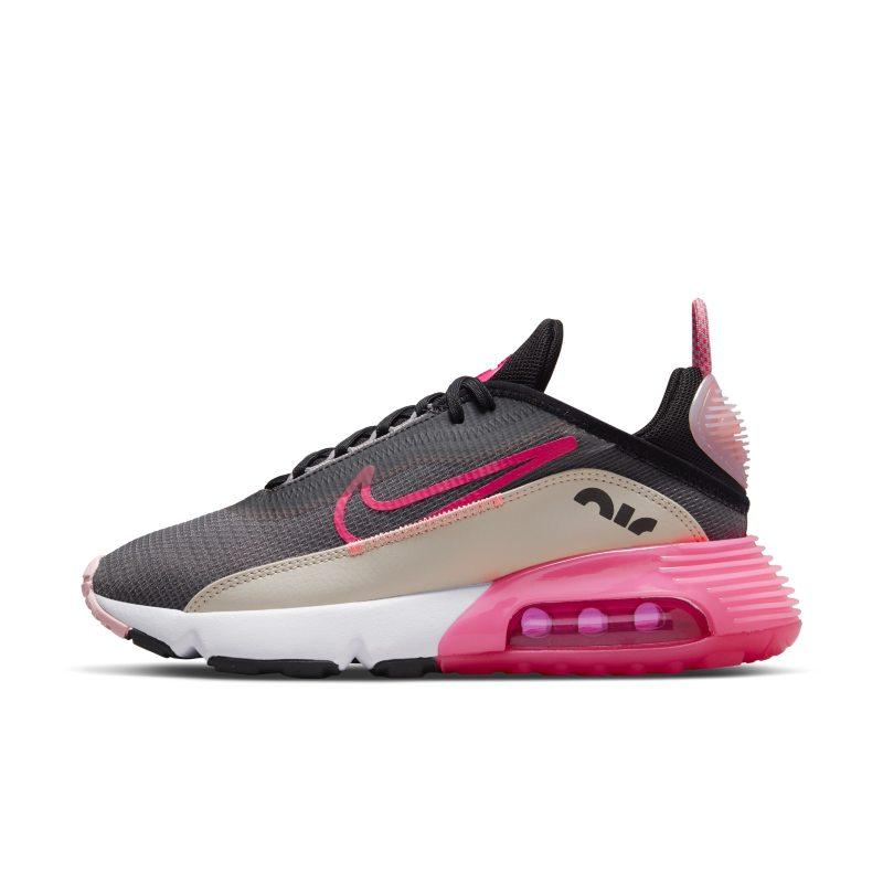 Nike Air Max 2090 DM3052-001 01