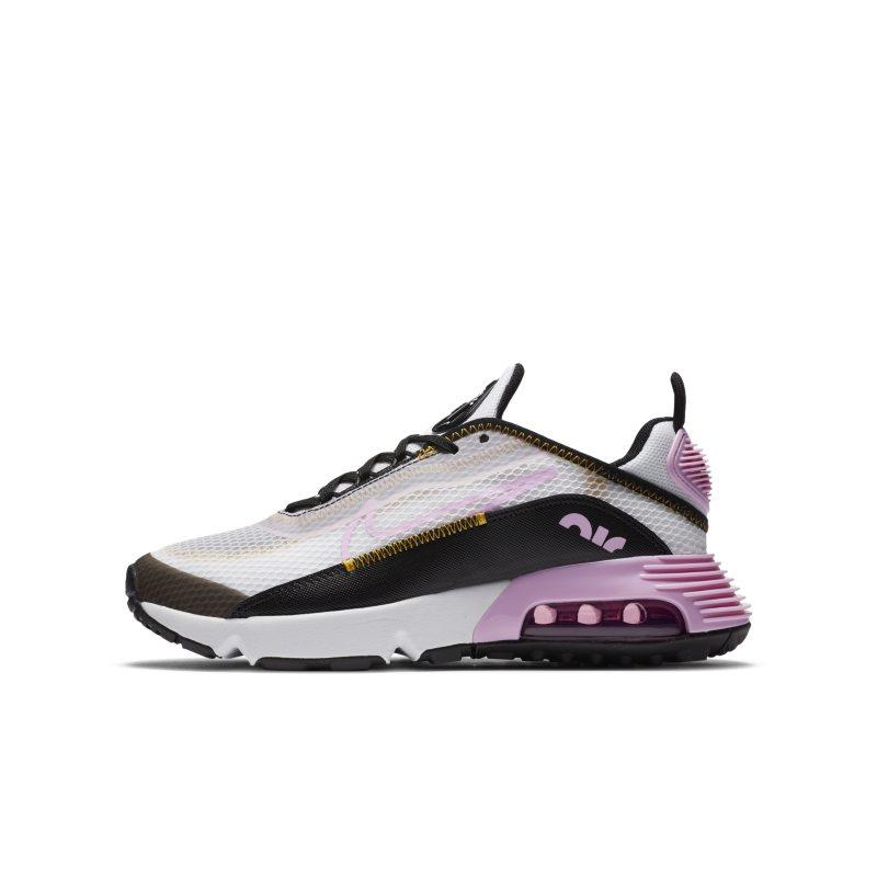Nike Air Max 2090 CJ4066-104