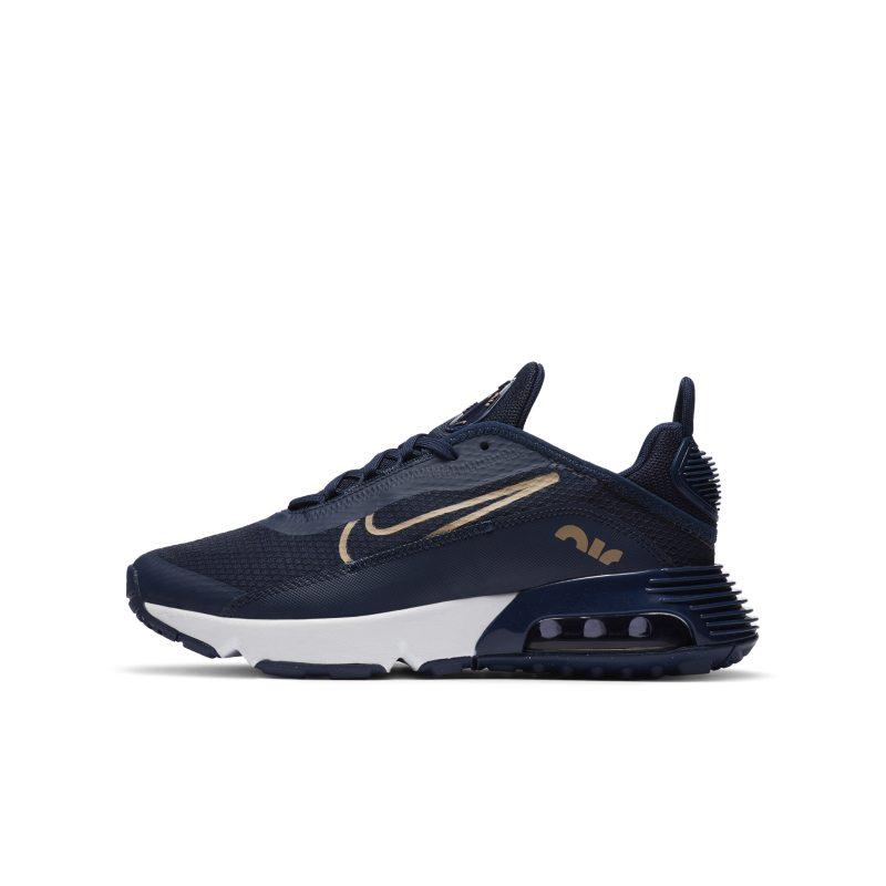 Nike Air Max 2090 CJ4066-401 01