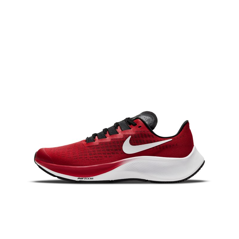 Nike Air Zoom Pegasus 37 CJ2099-600 01