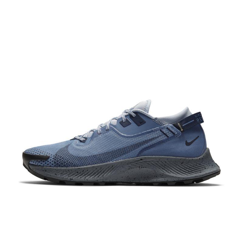 Nike Pegasus Trail 2 GORE-TEX CU2016-400 01