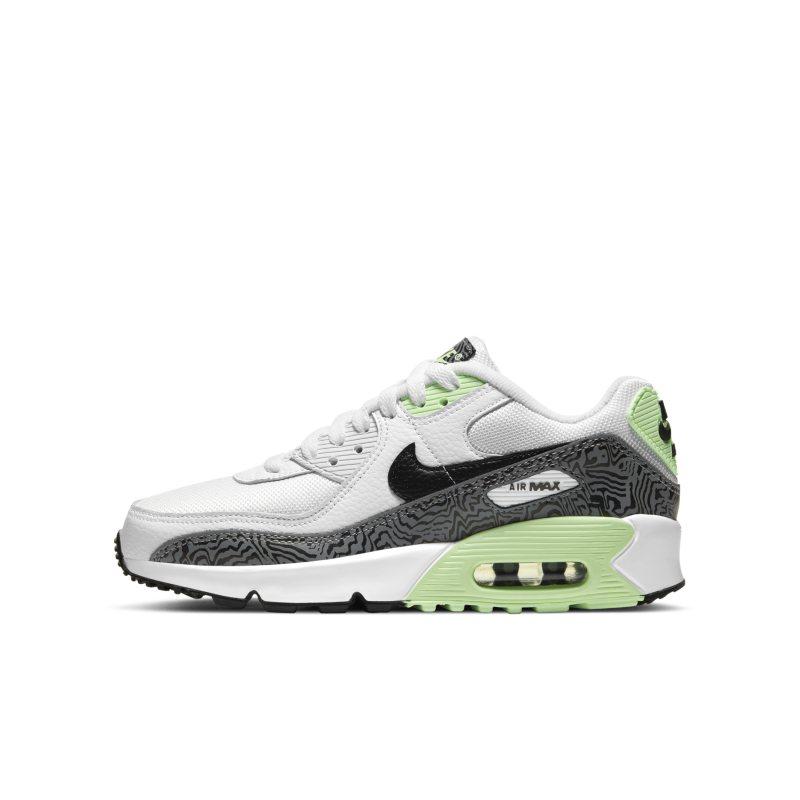 Nike Air Max 90 DH4111-100 01